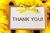 Thank you card with yellow gerberas — Stock Photo