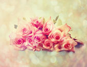 Vintage pink roses — Stock Photo