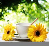Coffee cup with yellow gerberas — Zdjęcie stockowe