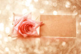 Vintage rose with message card — Stock Photo