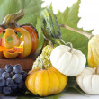 Autumnal food — Stock Photo