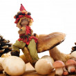 Elf with mushrooms and pine cones — Foto de Stock