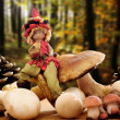 图库照片: Elf with mushrooms and pine cones