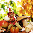Forest elf with autumnal fruits and mushrooms — Foto de Stock