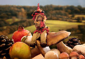 Forest elf with autumnal fruits and vegetable over natural backg — Stockfoto