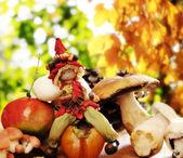 Duende da floresta com frutas outonais e cogumelos — Foto Stock