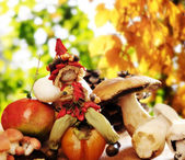 Forest elf with autumnal fruits and mushrooms — Stock Photo