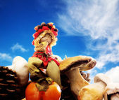 Forest elf with boletus and persimmon over blue sky — Stock Photo