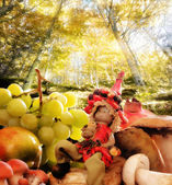 Elf with autumnal food against forest background — Stok fotoğraf