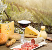 Red wine glass with chesse selection against italian Collio vin — ストック写真
