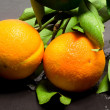 Orange branch, fresh from orange tree — Stock Photo #17592377