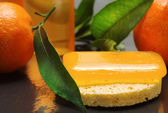 Citrus bar of soap with fresch clementines — Foto Stock