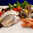 Raw fish and mollusk selection — Stock Photo
