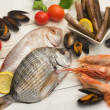 Selection of fish , mollusk and crustaceans — ストック写真