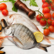 Selection of fish , mollusk and crustaceans — Stock Photo