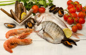 Raw fish,crustaceans and mollusk selection — Stock Photo