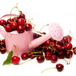 Cherries with pink watering can — ストック写真
