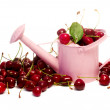 Delicious cherries with watering can — Stok fotoğraf
