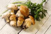 Boletus and champignons — Stock Photo