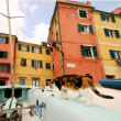 Stock Photo: Boccadasse glimpse to Genoa