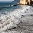 Stock Photo: Camogli glimpse with rough sein foreground