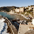 Camogli village view of the touristic harbor — Stock Photo