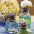 Stock Photo:  thalassotherapy essential oils