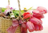 Composizione di pasqua con uova decorative e tulipani — Foto Stock
