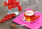 Rooibos tea with redcurrant — Stock Photo
