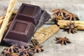 Dark chocolate with cinnamon and star anis spices — Foto de Stock