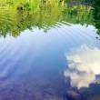 Natural reflection on water — Stock Photo