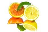 Taze limon ve portakal meyveler — Stok fotoğraf