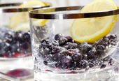 Blueberry dessert with lemon and sugar — Stock Photo