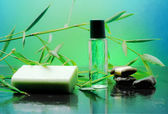 Bamboo spa over green background — Stock Photo