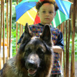 The boy and his huge dog stand near bamboo curtain — Stock Photo