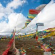 Tibetan Landscape — Stock Photo #24808767