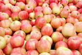 Fresh red apples background — Stock Photo