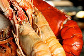 Giant Lobster — Stock Photo