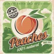 Peaches, vintage poster template — Stock Vector