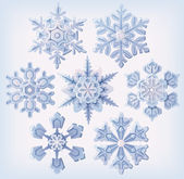 Set of ornate three dimensional snowflakes icons. — Stock Vector