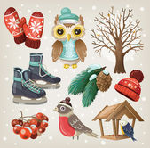 Set of winter items and elements — Stok Vektör