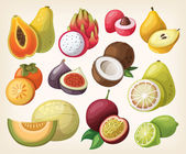 Set of exotic fruit — Stock Vector