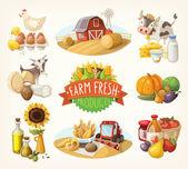 Sada farma čerstvý ilustrací — Stock vektor