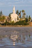 Hala sultan tekke moschee — Stockfoto
