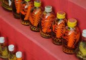 Vietnamese Snake Wine — Stock Photo