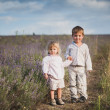 Charming children on lavender field at sunset — Stock Photo
