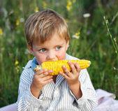 Adorable jeune garçon manger du maïs en épis — Photo