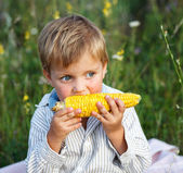 Adorable young boy eating corn on the cob — Stock Photo