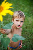 Vackra lilla tjej och solros — Stockfoto