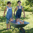 Children play in garden — Stock Photo